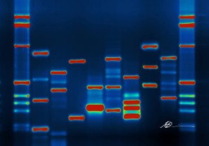 DNA-Micah-Baldwin-flickr